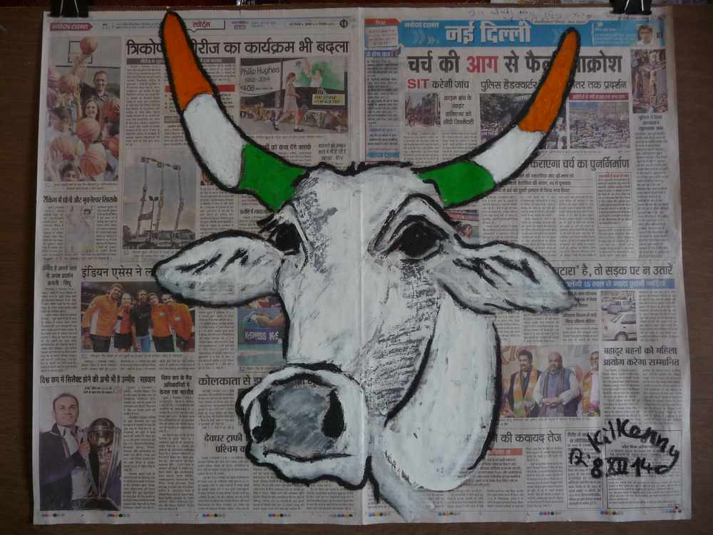Indian Cow on Navodaya Times